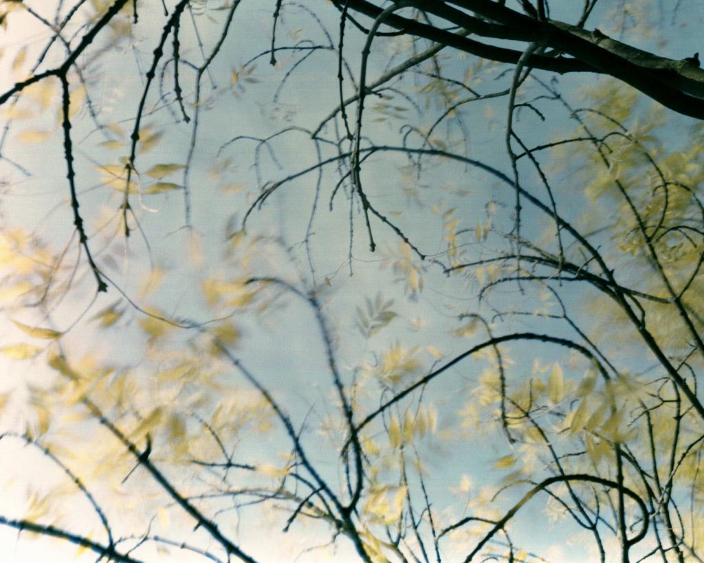 59935-1427627125-Untitled-16-_2009__-24-x-30__-Edition-of-5_KurtTong
