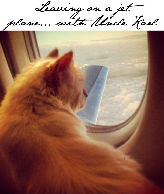 Choupette-Karl-Lagerfeld-plane