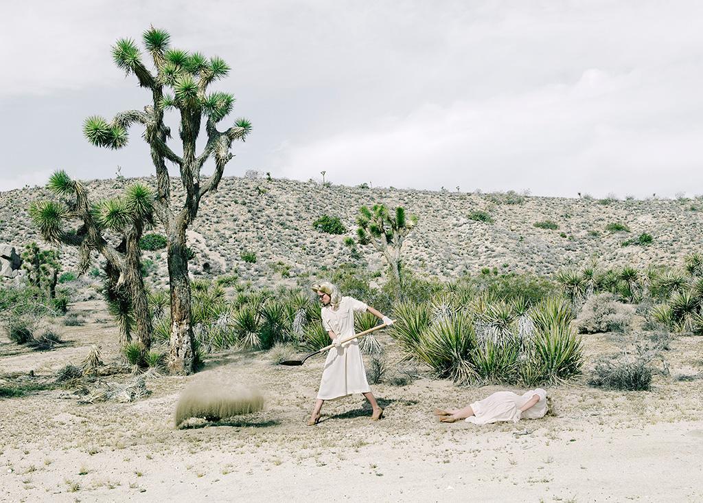 The-desert